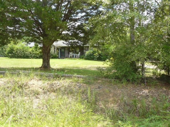 1001 Chestnut Rd., Slocomb, AL 36375 Photo 3