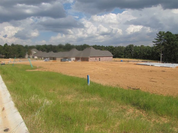3119 Harrison Hills Dr., Jonesboro, AR 72404 Photo 9