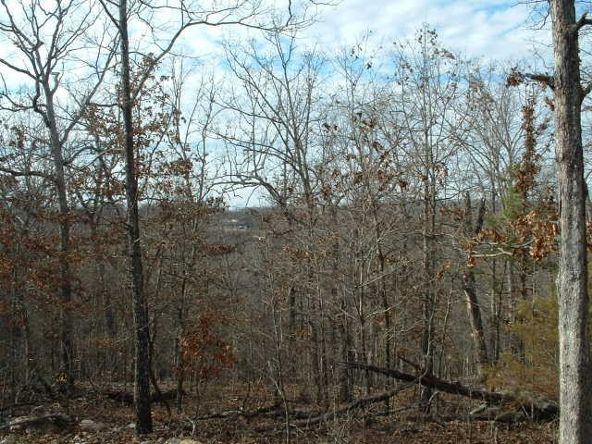 Lts 83-86 Linwood Dr., Briarcliff, AR 72653 Photo 8