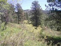 Home for sale: Lot C-2 Last Chance Trail, Lead, SD 57754