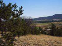 Home for sale: Lot 32 Valley View, Eagar, AZ 85925