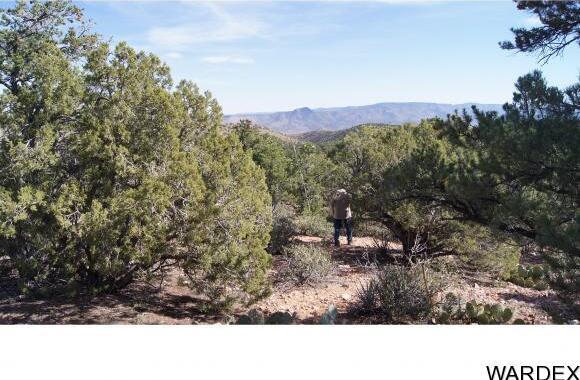 6731 N. Trap Springs Rd., Hackberry, AZ 86411 Photo 9