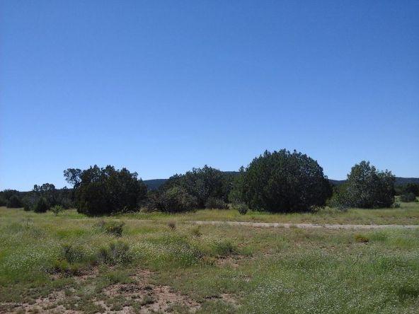 47683 N. Deadwood Rd., Seligman, AZ 86337 Photo 21