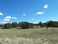 Home for sale: 5 Acres Stanford, Concho, AZ 85924