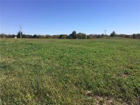 Home for sale: 1302 Ragan Dr., Pleasant Hill, MO 64080