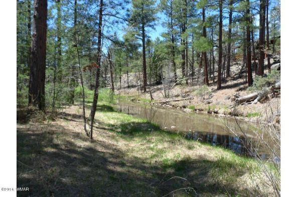 920 W. Billy Creek Dr., Lakeside, AZ 85929 Photo 39