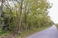 Home for sale: 0 Reese Rd., Bethpage, TN 37022