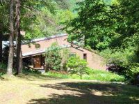 Home for sale: 360 Little Timber Rd., Jewett, NY 12444