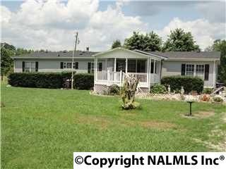 180 Hoyt Hill Rd., Ashville, AL 35953 Photo 1