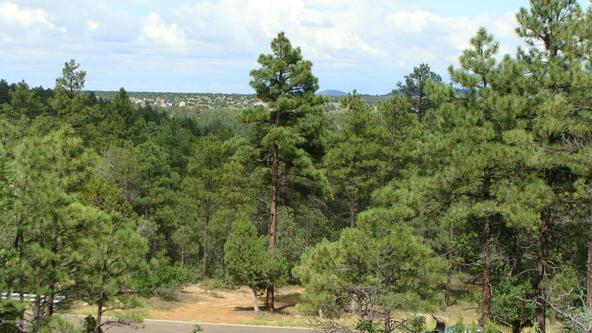 1720 S. Pleasant View Dr., Show Low, AZ 85901 Photo 7