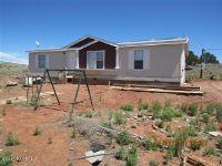 Home for sale: 50875 N. Bobcat Kitten Trail, Seligman, AZ 86337