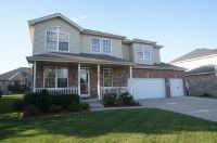 Home for sale: 897 Ruthenbeck Ln., New Lenox, IL 60451
