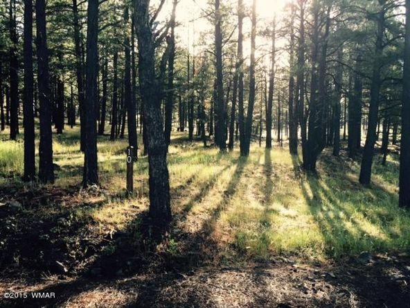 9580 Sierra Springs Way, Pinetop, AZ 85935 Photo 20