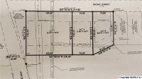 Home for sale: 0 Short St., Albertville, AL 35950