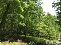 Home for sale: 520 Uwharrie Ridge Rd., Chapel Hill, NC 27516
