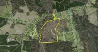 Home for sale: Tract 1 Comfort Rd., Richlands, NC 28574