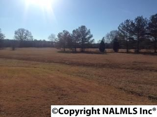 3787 Smith Rd., Southside, AL 35907 Photo 6