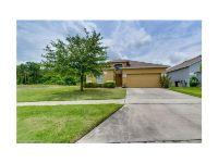 Home for sale: 3146 Dasha Palm Dr., Kissimmee, FL 34744