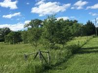 Home for sale: Tbd S.W. Prairie Creek Rd., Rose Hill, KS 67133
