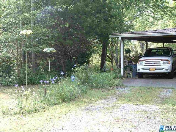 10175 Co Rd. 73, Montevallo, AL 35115 Photo 9