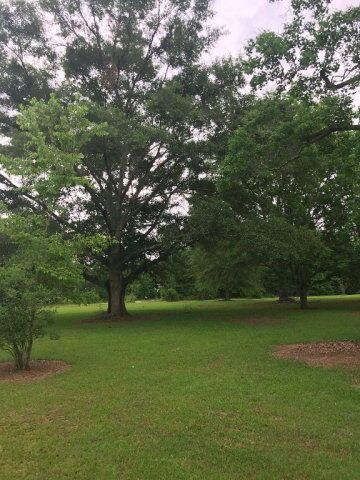 1158 Mccoy, Cottonwood, AL 36320 Photo 30