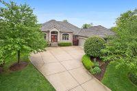 Home for sale: 17 Loblolly Ct., Lemont, IL 60439
