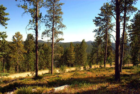 Lot 5, Powder House Trail, Lead, SD 57754 Photo 23