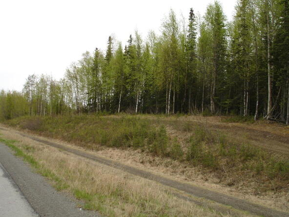 37135 Sterling Hwy., Sterling, AK 99672 Photo 2