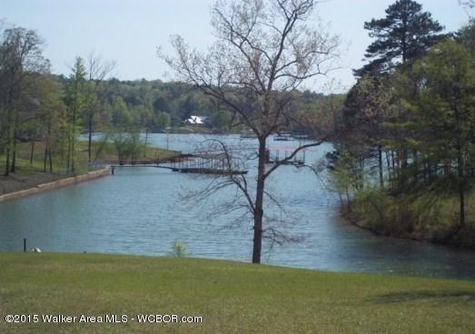 315 Bridgeview Rd., Arley, AL 35541 Photo 42
