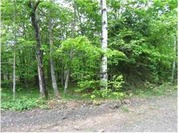 Home for sale: Lot 3 Off Us 41, Mohawk, MI 49950