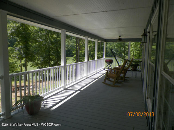 1202 Forest Service Rd., Arley, AL 35541 Photo 6