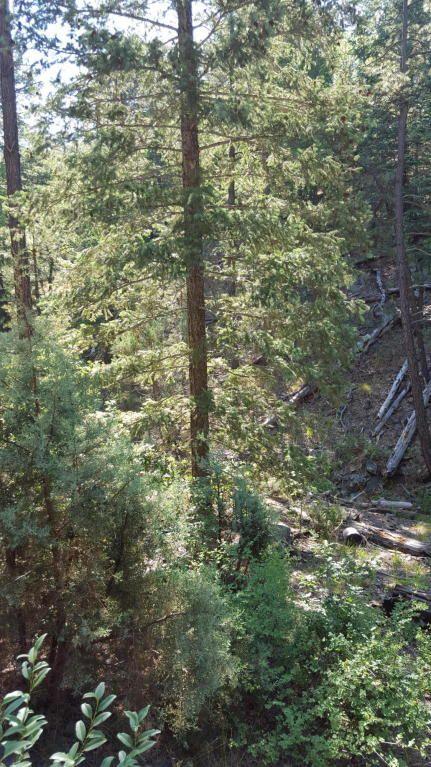 2655 E. Preddy, Prescott, AZ 86305 Photo 6