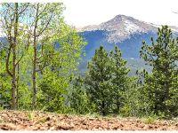 Home for sale: 704 Woodrock Way, Divide, CO 80814