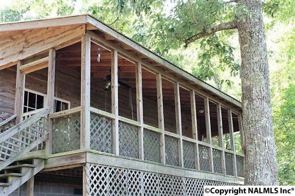 20021 County Rd. 89, Mentone, AL 35984 Photo 4