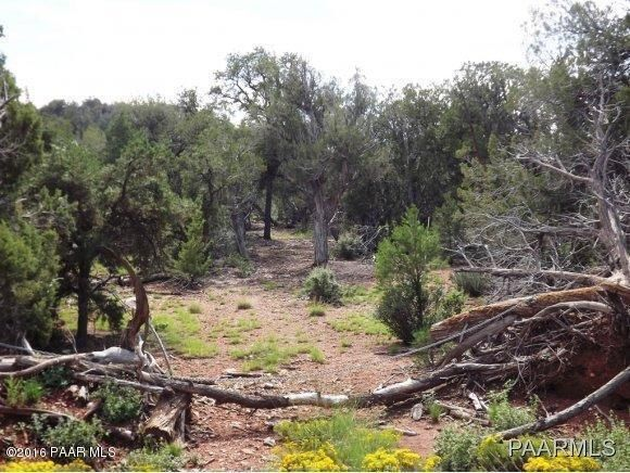 1449 Off Of Big Dip Rd., Seligman, AZ 86337 Photo 13
