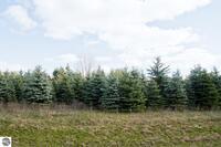 Home for sale: 0016 Lipp Farm Rd., Benzonia, MI 49616