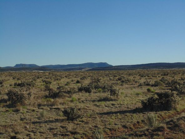 1430 Sierra Verde Ranch, Seligman, AZ 86337 Photo 3