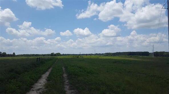 Tbd County Rd. 40, Coffee Springs, AL 36318 Photo 8