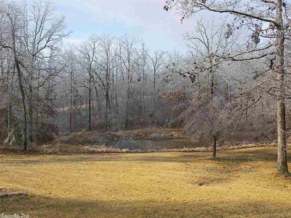 235 Backbone Rd., Evening Shade, AR 72532 Photo 31