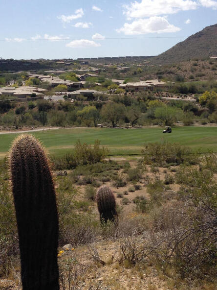 15743 E. Robin Dr., Fountain Hills, AZ 85268 Photo 18