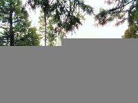 Home for sale: 285 Osprey Loop, Lake Almanor, CA 96020