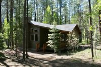 Home for sale: 2 Cr 2069, Alpine, AZ 85920