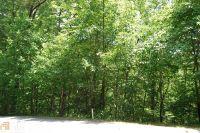 Home for sale: 0 Kingwood Dr., Clayton, GA 30525