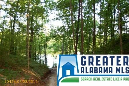 4 Rock Creek Co Rd. 4312, Wedowee, AL 36278 Photo 4