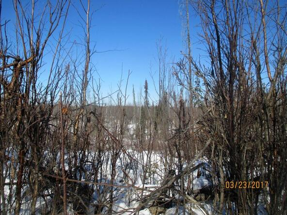 15696 W. Henderson Rd., Big Lake, AK 99652 Photo 4