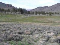 Home for sale: Tolyable Meadows Lot 32 Hwy395, Bridgeport, CA 93517