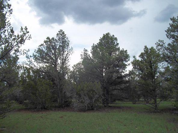 184 E. Bald Eagle Ln., Williams, AZ 86046 Photo 2