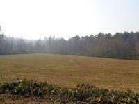 Home for sale: Ben Jones Rd., Clarkesville, GA 30523