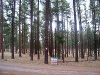 Home for sale: Lot 9 Greer Acres --, Greer, AZ 85927