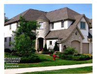 Home for sale: 834 Leona Mae Ct., Naperville, IL 60563